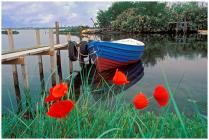 071022-23-cd-19-valle-piomboni-barca-con-papaverst3045