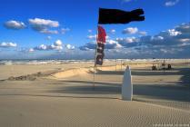 sc080303-mare-bandiera-nera-bis-ok